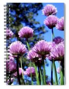 Flowering Chives Spiral Notebook