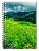 Flowering Colorado Mountain Meadow Spiral Notebook
