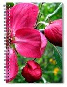Flowering Crab Apple Spiral Notebook