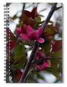 Flowering Crabapple Spiral Notebook
