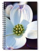 Flowering Dogwood Spiral Notebook