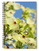 Flowering Dogwood Tree Art Print White Dogwood Flowers Blue Sky Art Spiral Notebook