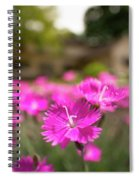 Flowering In The Front Spiral Notebook