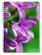 Flowering Lilac Spiral Notebook