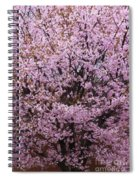 Flowering Pink In Spring Spiral Notebook