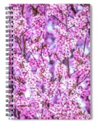 Flowering Plum Blossoms. Spiral Notebook