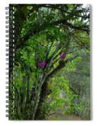 Flowering Trees Near The Path Spiral Notebook