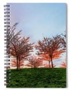 Flowering Young Cherry Trees On A Green Hill In The Park  Spiral Notebook