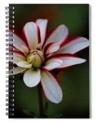 Flowers 66 Spiral Notebook