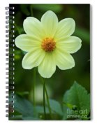 Flowers 72 Spiral Notebook