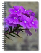 Flowers Against The Wall Spiral Notebook