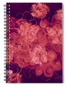 Flowers, Buttons And Ribbons -shades Of Burbundy Rose Spiral Notebook