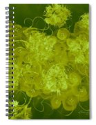 Flowers, Buttons And Ribbons -shades Of Chartreuse Spiral Notebook