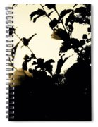 Flowers In Black And White Spiral Notebook