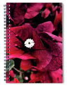 Flowers Of Mount Totems 2 Spiral Notebook
