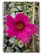 Flowers Of Mount Totumas Spiral Notebook