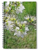 Flowers Of The Blackthorn Shrub Spiral Notebook