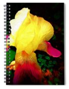 Flowers Of The Universe Spiral Notebook