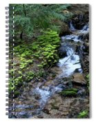 Flowing Creek Spiral Notebook