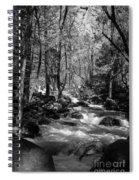 Flowing Creek Spiral Notebook