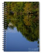 Flowing Reflection Spiral Notebook