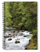 Flowing Through The Trees Spiral Notebook