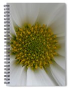 Core Of A Daisy Spiral Notebook