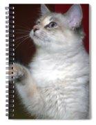 Fluffy Spiral Notebook