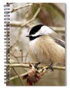 Fluffy Chickadee Spiral Notebook
