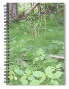 Fluffy Ferns Spiral Notebook