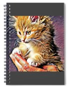 Fluffy Orange Kitten Spiral Notebook