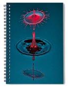 Fluid Parasol Spiral Notebook