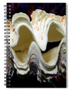 Fluted Giant Clam Shell Spiral Notebook