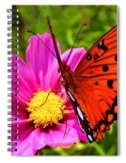 Fritillary Flutterby Spiral Notebook