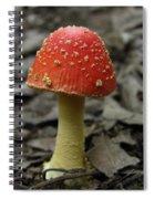 Fly Agaric Mushroom Spiral Notebook