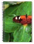Fly Away Spiral Notebook