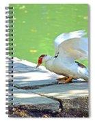 Fly Away Duck Spiral Notebook