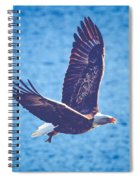 Fly By Eagle. 2 Of 3 Spiral Notebook