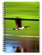 Fly-by Spiral Notebook