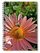 Fly On Flower Spiral Notebook
