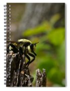 Fly On Mountain Spiral Notebook