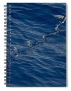 Flyer Spiral Notebook
