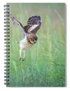 Flying Baby Burrowing Owl Spiral Notebook