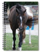 Flying Circus Spiral Notebook