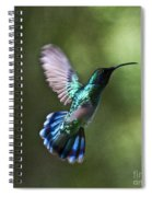 Flying Emerald Spiral Notebook