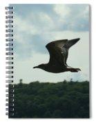 Flying Ephraim Wi Spiral Notebook