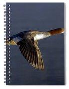 Flying Female Merganser - Odell Lake Oregon Spiral Notebook