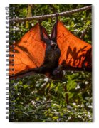 Flying Foxes Spiral Notebook