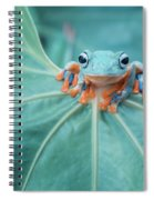 Flying Frog Wallace Spiral Notebook