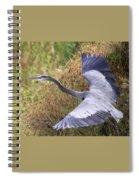 Flying Great Blue Heron Spiral Notebook